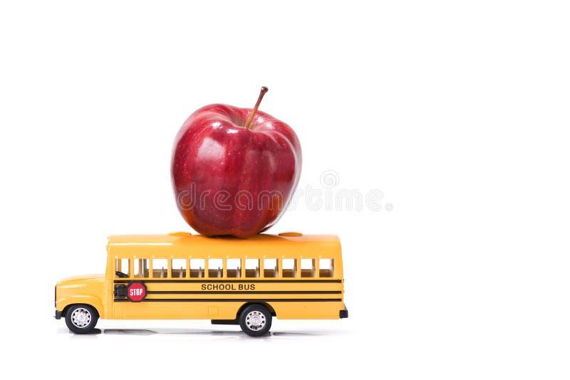 Образование, задняя часть для того чтобы обучить концепцию на белой предпосылке стоковое фото rf