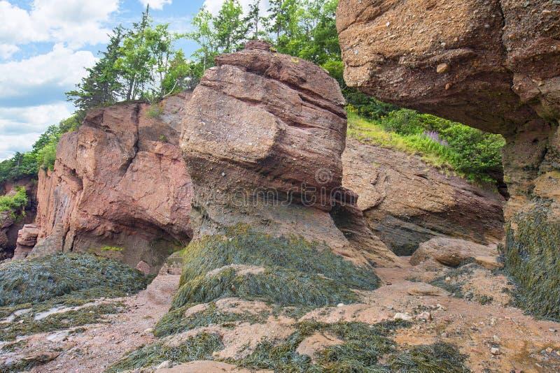 Образования основы моря на утесах Hopewell стоковое фото