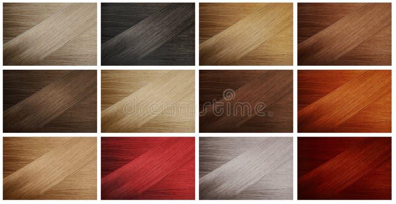 образцы волос стоковая фотография