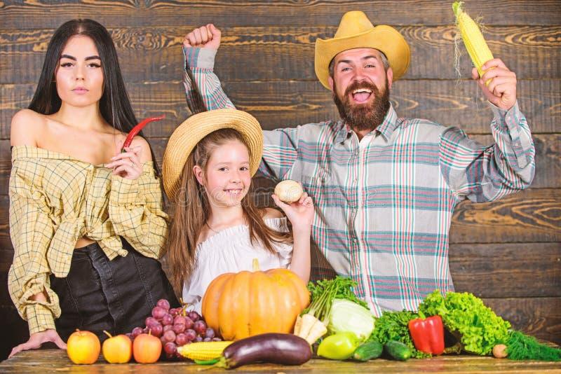 Образ жизни семьи сельской местности Рынок фермы с концепцией фестиваля фермы семьи сбора падения Фермер человека бородатый дерев стоковое изображение rf