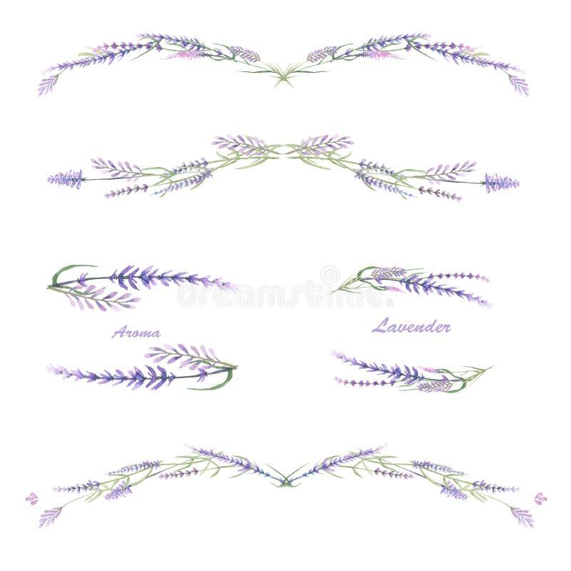 Обрамите границу, флористический декоративный орнамент с лавандой акварели иллюстрация штока