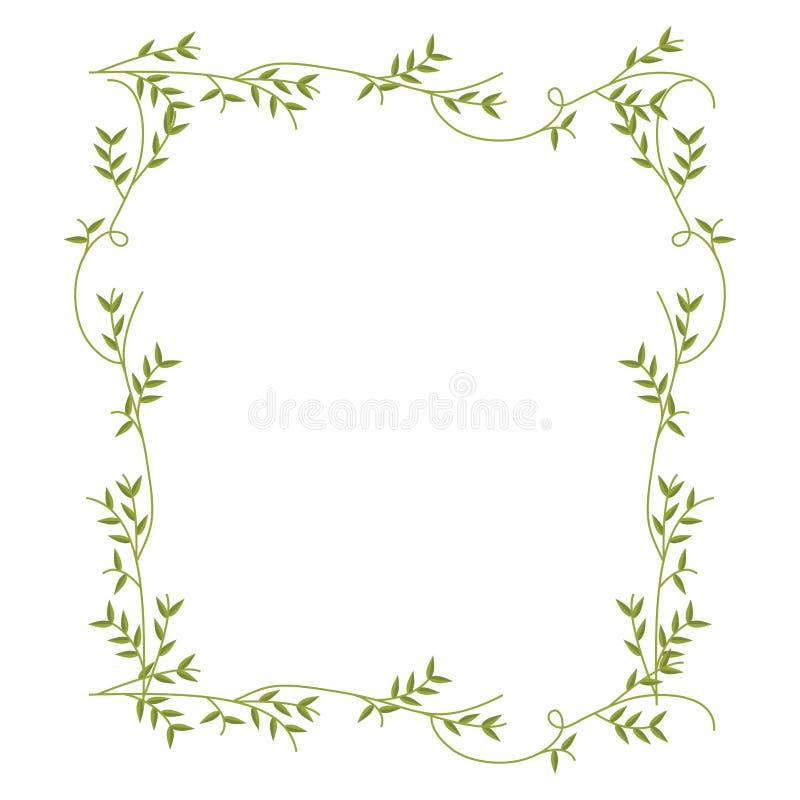 Обрамите с зеленым дизайном природы creepers бесплатная иллюстрация