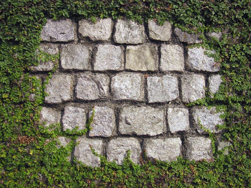 обрамленная стена Стоковые Фото