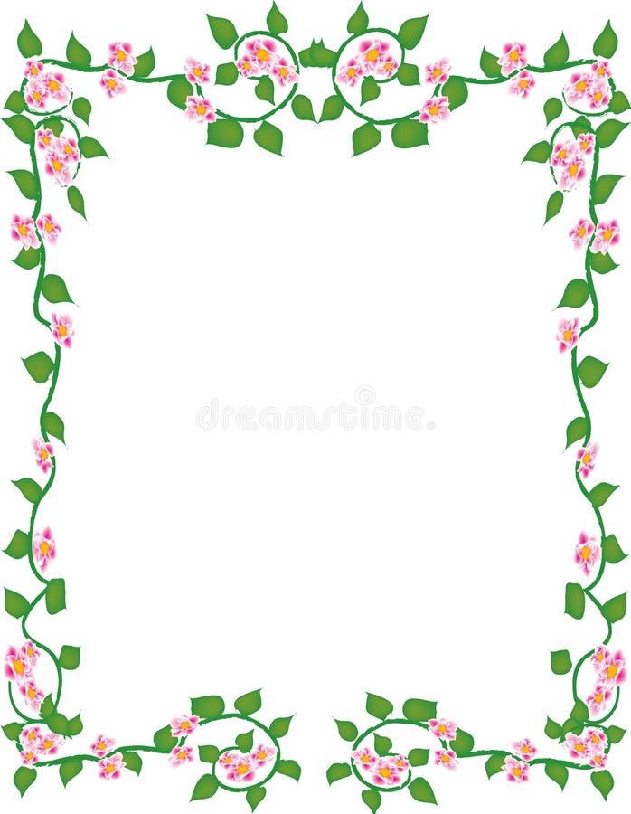 обрамленные цветки стоковое фото