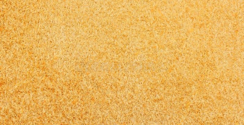 Обратная сторона части естественной кожи стоковое фото