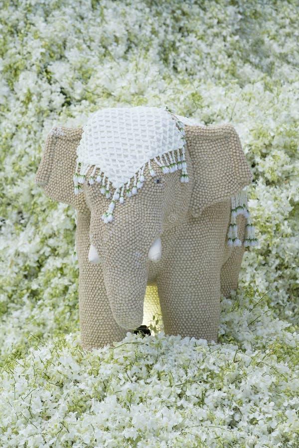 Обременительное имущество с белой предпосылкой орхидеи стоковые фото