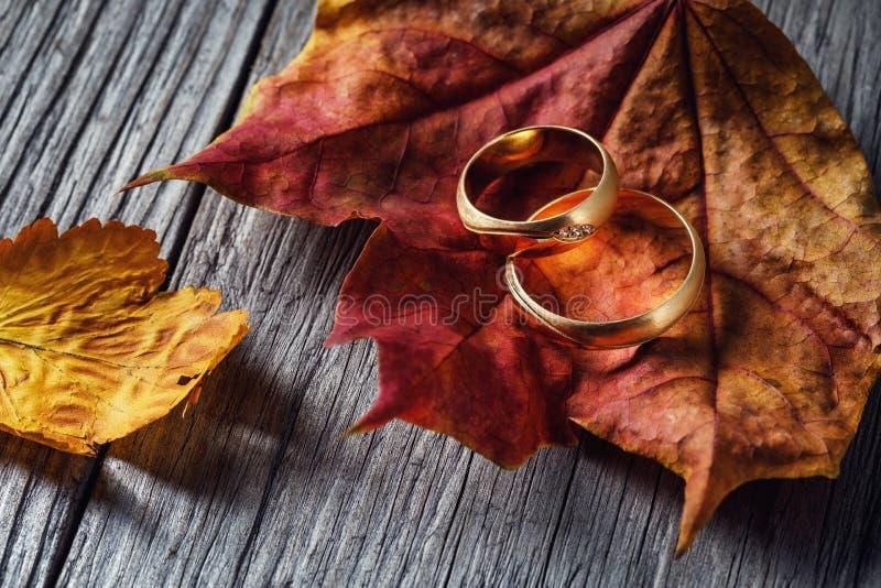 2 обручального кольца на листьях осени на деревянной доске стоковые фотографии rf
