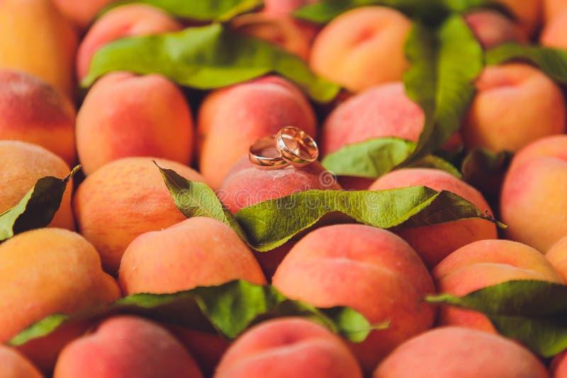 Обручальные кольца на абрикосах красивая свадьба лета стоковые изображения