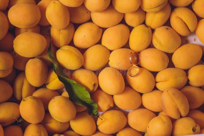 Обручальные кольца на абрикосах красивая свадьба лета стоковое изображение rf