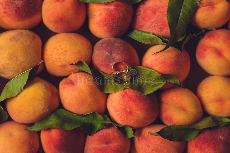 Обручальные кольца на абрикосах красивая свадьба лета стоковые фотографии rf