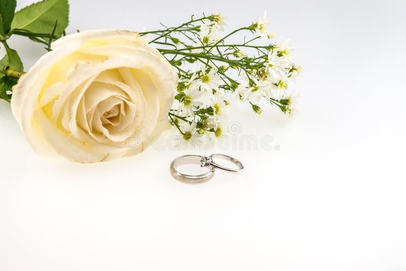 Обручальное кольцо с изолятом цветка белой розы и резца на белизне стоковое фото