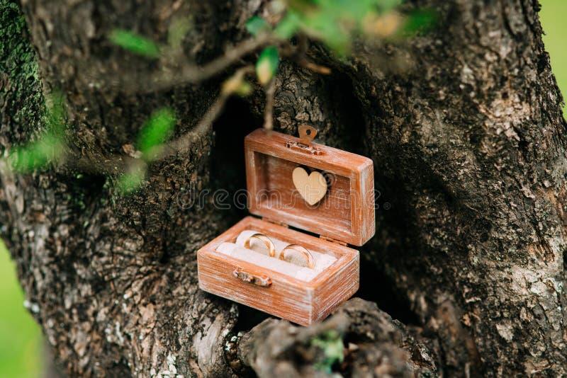 Обручальные кольца в деревянной коробке для колец handmade стоковые изображения rf
