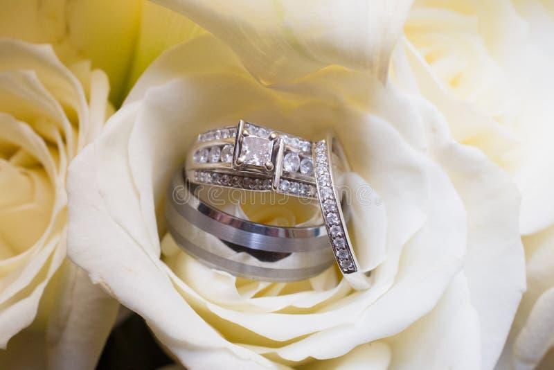 Обручальные кольца в подняли стоковые фотографии rf