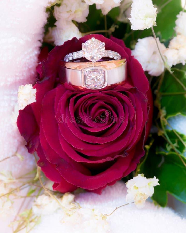 Обручальные кольца на розе цветут стоковое изображение