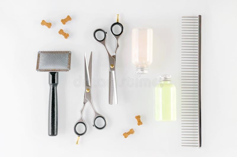 Обслуживания инструментов, ножниц, щетки, гребня, шампуня и собаки холить, плоское положение стоковые фотографии rf