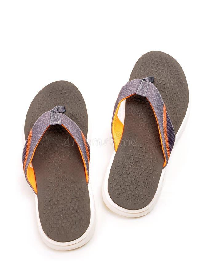Обувь/чапли стоковая фотография rf
