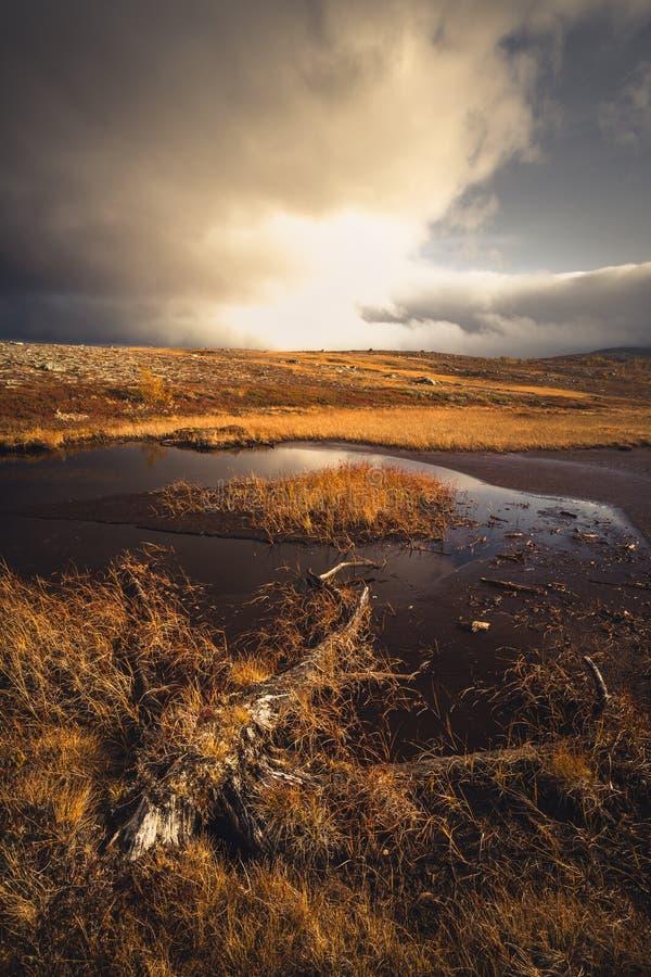 Обширные ландшафты около гор Sylan Норвежская осень Небольшое Ла стоковая фотография