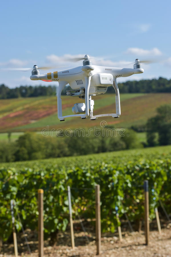 Общего назначения трутень над wineyard стоковые фото