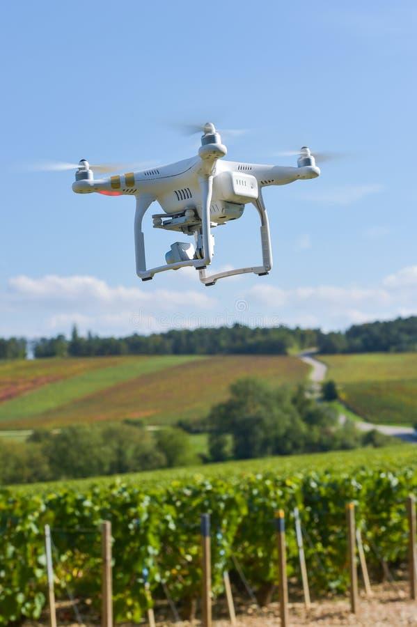 Общего назначения трутень над wineyard стоковое фото rf