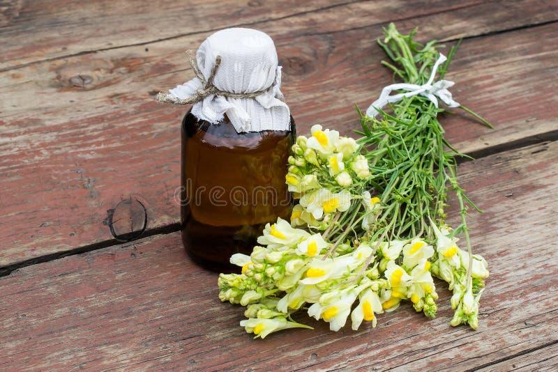 Общее toadflax (Linaria vulgaris) и фармацевтическая бутылка стоковое изображение rf