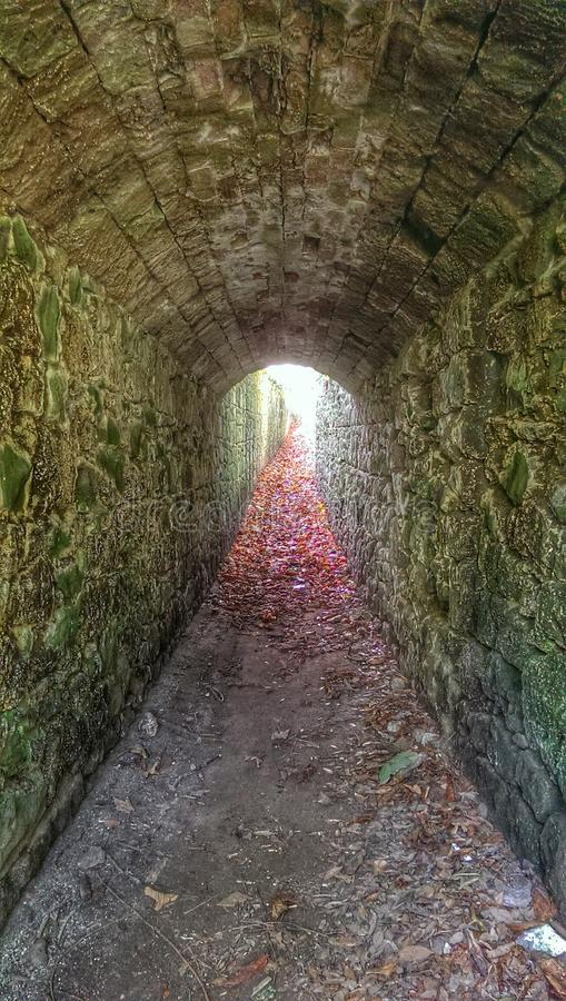 Общественные тоннели стоковое фото rf