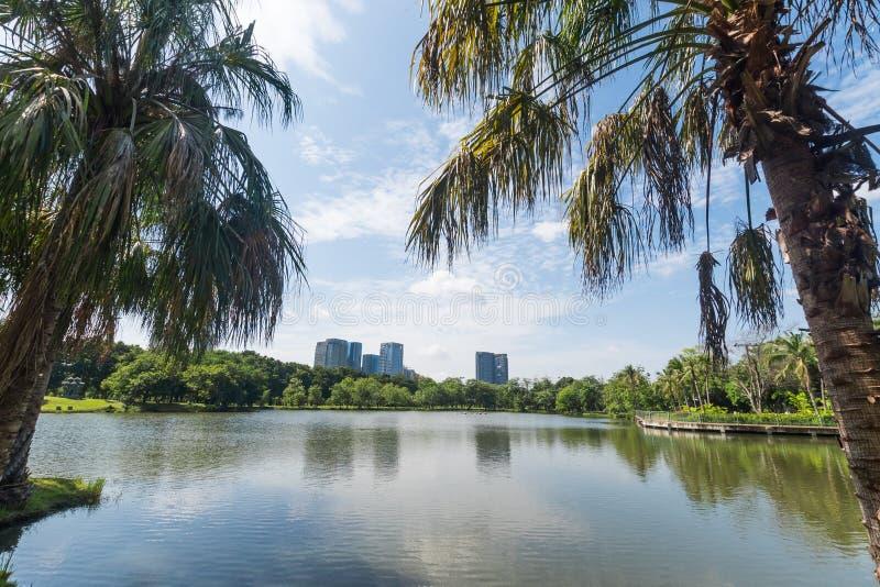Общественный парк в большом городе Концепция места и outdoors Тема природы и ландшафта Положение Бангкока Таиланда стоковая фотография