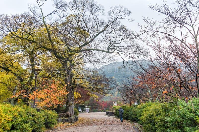 Download Общественный парк когда осень приходит в Киото, Японию Стоковое Изображение - изображение насчитывающей цвет, естественно: 81814629