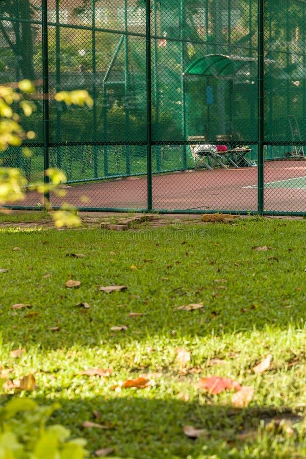 Общественный теннисный корт/теннисный корт/парк теннисного корта публично стоковые изображения rf