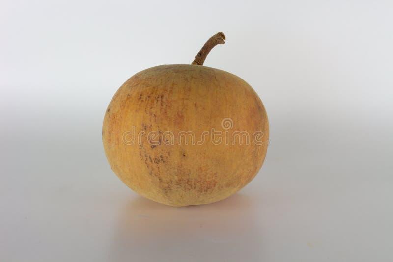 Объект желтого цвета плодоовощ Santol стоковое фото rf