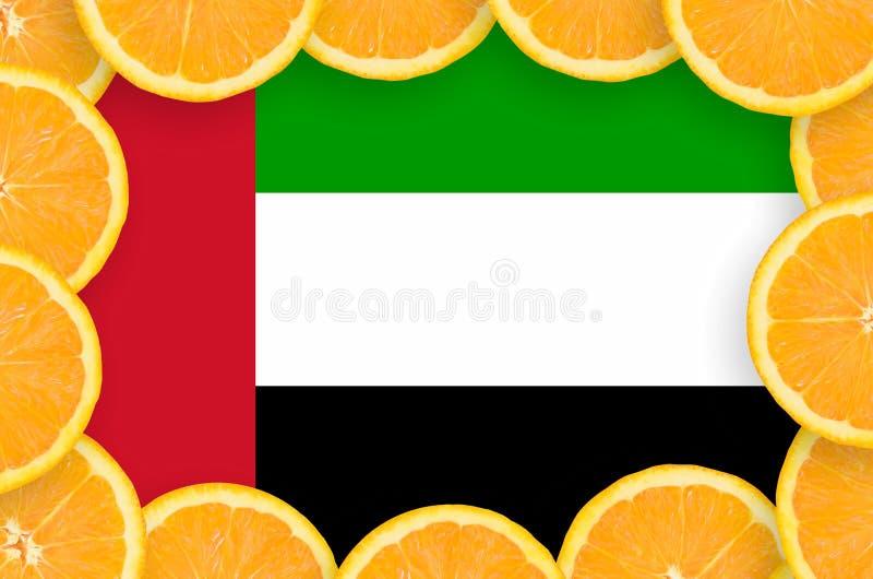 Объениненные Арабские Эмираты сигнализируют в свежей рамке кусков цитрусовых фруктов иллюстрация вектора