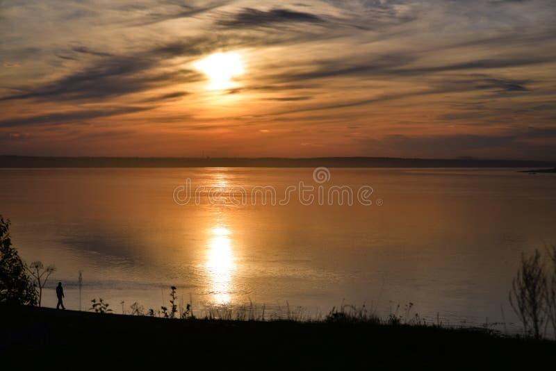 Облака в форме птицы на заходе солнца стоковые фотографии rf