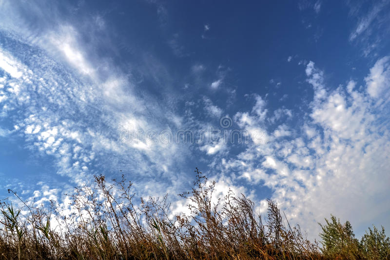 Облака цирруса в голубом небе стоковое изображение