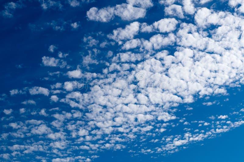 Облака Altocumulus в голубом небе на солнечный мирный день стоковая фотография