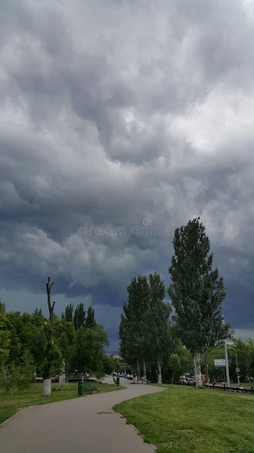 Облако в парке стоковая фотография rf