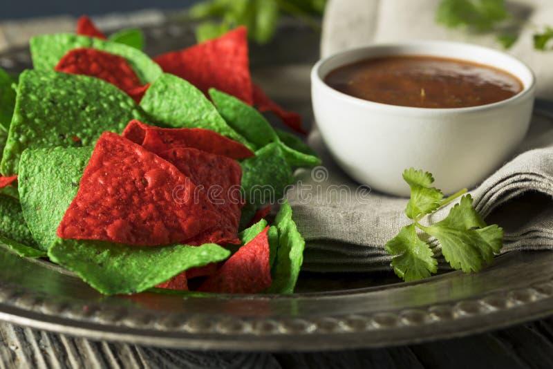 Обломоки праздничного рождества зеленые и красные Tortilla стоковые фото