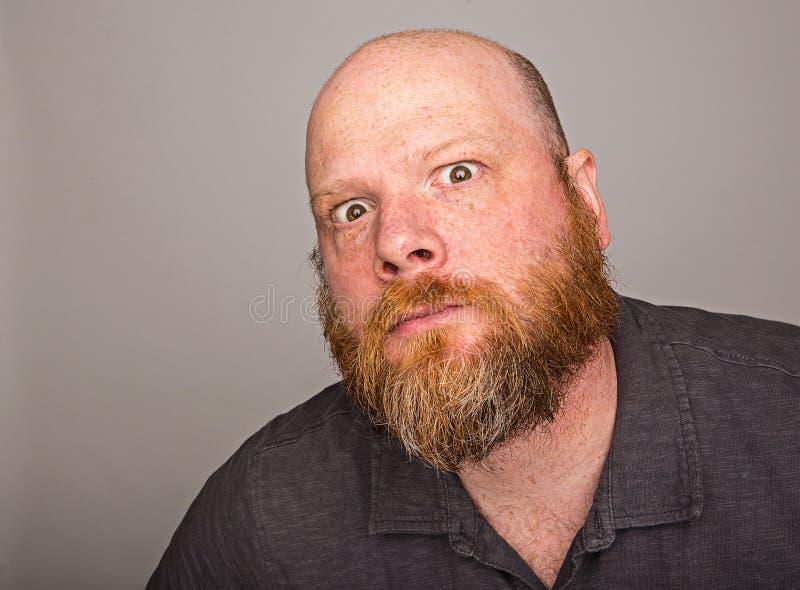 Облыселый человек с польностью красной бородой стоковое изображение
