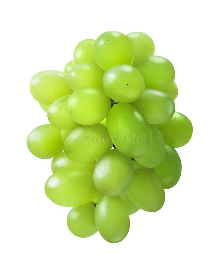 Овальный форменный зеленый пук виноградин изолированный на белой предпосылке стоковое изображение rf