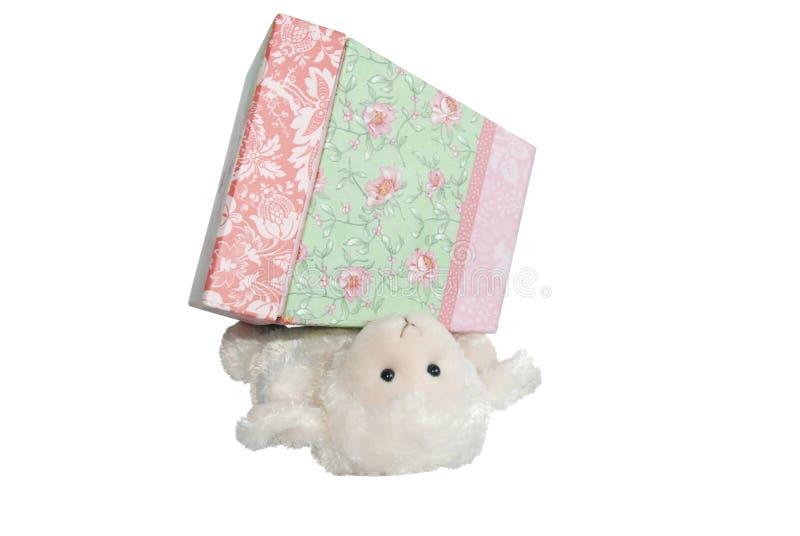 овечка коробки формулирует предложная нижнюю стоковое фото