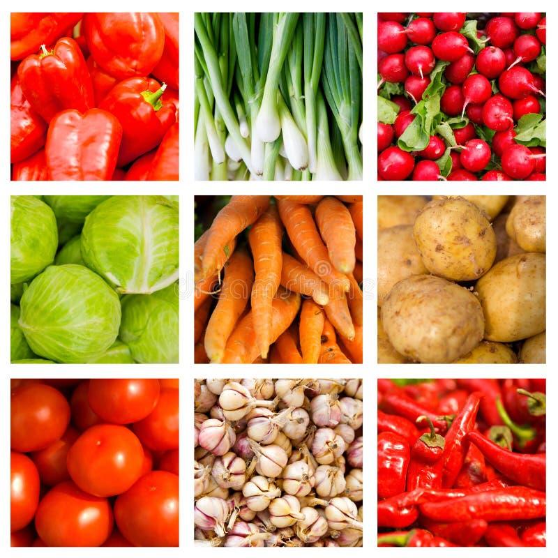 овощей коллажа свежие 9 стоковые изображения