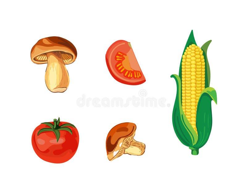 Овощи ВЕКТОРА установили, изолированный на белых иллюстрациях, овощи Зажим-искусства иллюстрация вектора