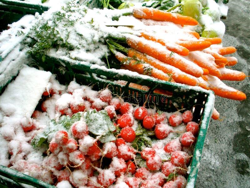 Овощи зимы стоковые изображения
