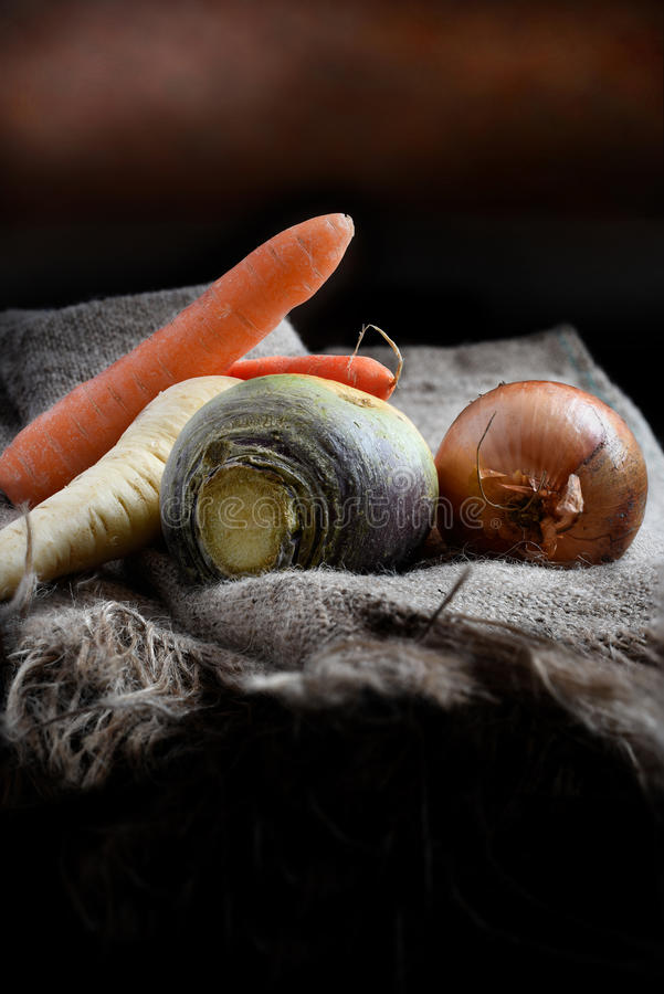 Овощи зимы стоковые фотографии rf