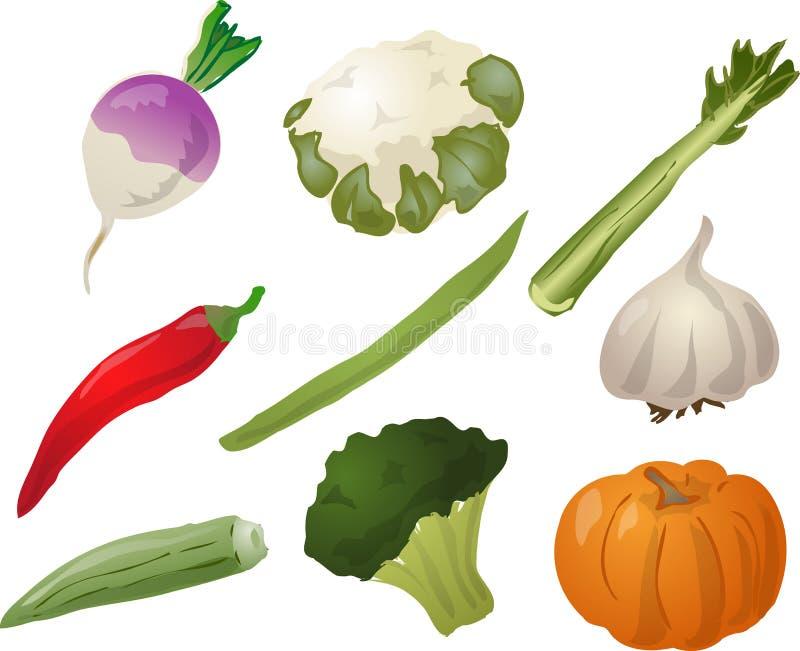 овощи иллюстрации иллюстрация вектора
