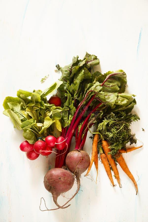 Овощи корня стоковые фотографии rf