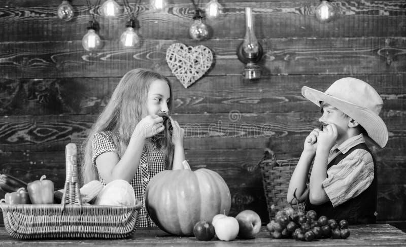 Овощи мальчика девушки фермеров детей жмут ферму семьи r Причины почему стоковое изображение rf