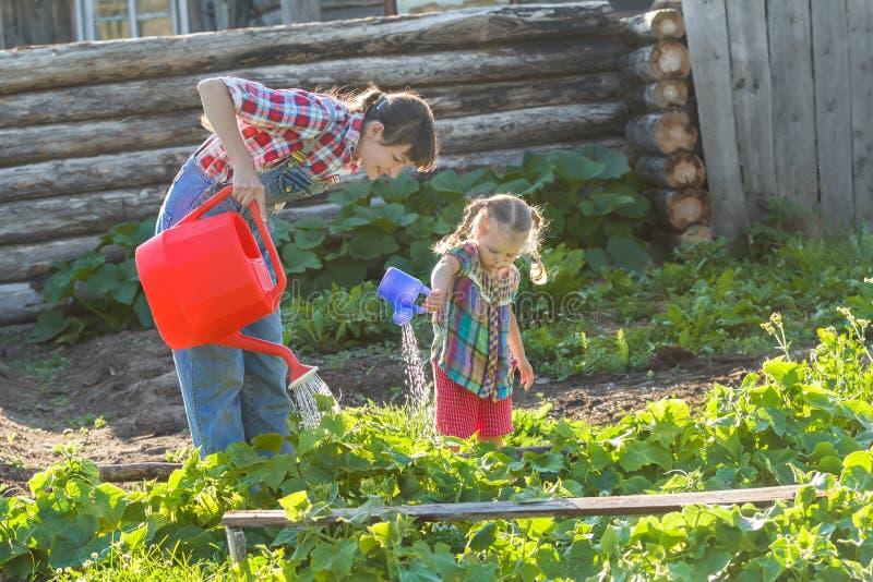 Овощи матери и дочери лить с пластичной оранжевой моча чонсервной банкой стоковая фотография