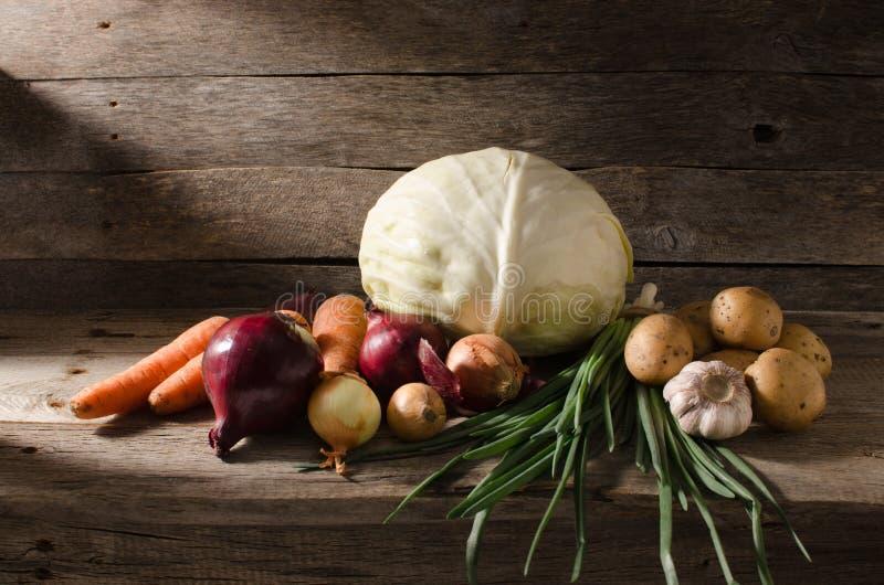 Овощи на полке в погребе стоковая фотография rf