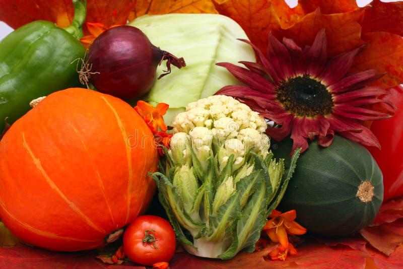овощи осени стоковая фотография rf