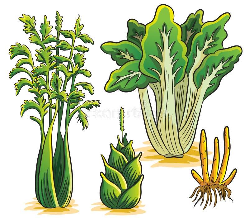 овощи собрания зеленые иллюстрация штока