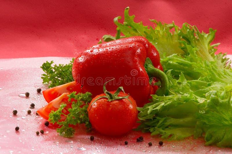 Овощи - томат, красный пеец, перчинки, зеленый салат с падениями воды стоковые изображения rf